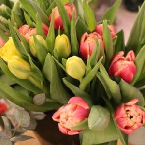 Bouquet de fleurs de saison modulable bouquet de tulipes achat en ligne de fleurs